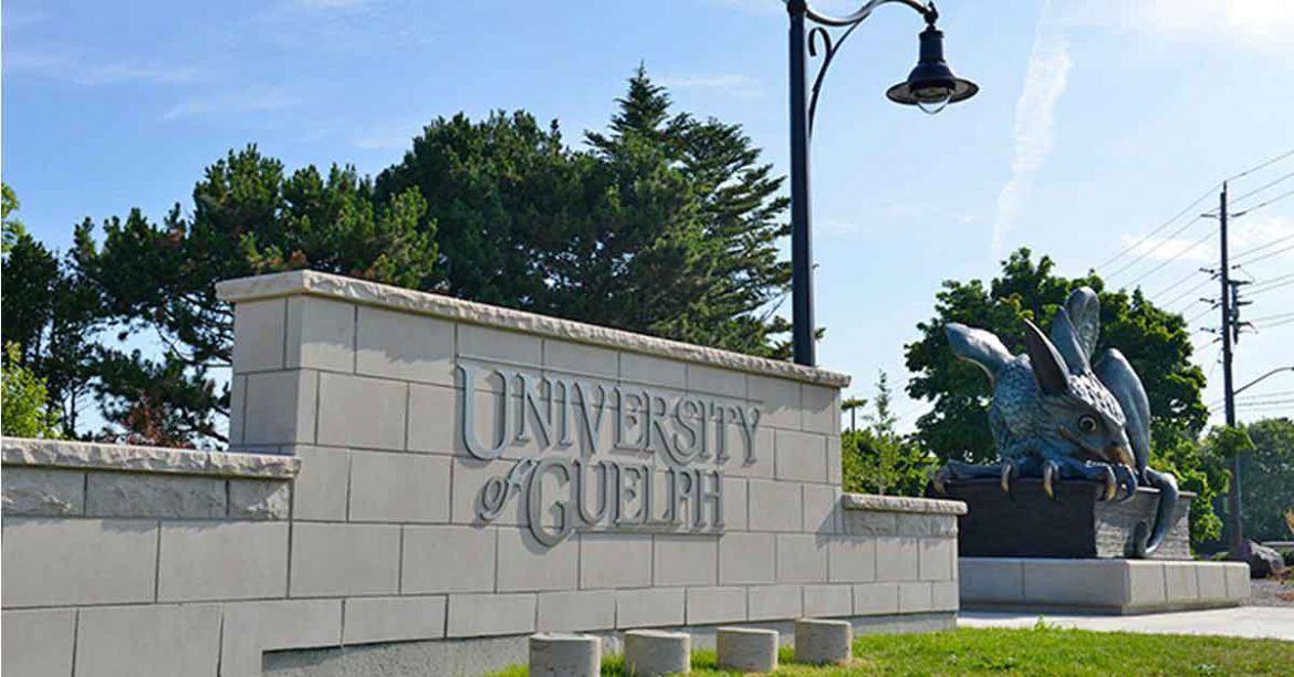 university-of-guelph-english-language-programs